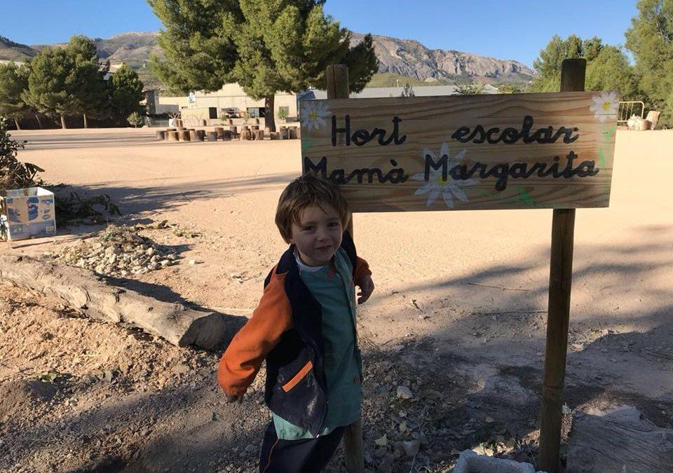 Esta vesprada els xiquets i xiquetes d'Educació Infantil han plantat faves en l'hort de Mamà Margarita