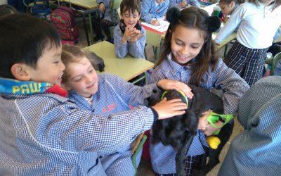 Los alumnos de 2º de primaria traen sus mascotas al colegio