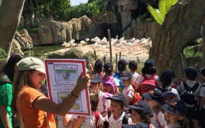 Los alumnos de 4 y 5 años en el Bioparc de Valencia